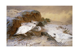 Ptarmigan in the Snow, 1898 Giclee Print by Archibald Thorburn