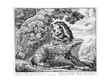 The Lion and the Mouse, Illustration to 'Aesop's Fables', 1687 Giclee Print by Francis Barlow