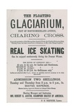 Advertisement for the Floating Glaciarium Giclee Print