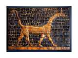 A Polychrome Glazed Brick from the Gates of Ishtar at Babylon Which Were Constructed During the… Giclee Print