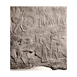 Stone Relief from the Palace of King Sennacherib, Nineveh Giclee Print