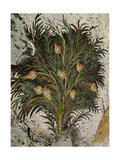A Detail of a Floor Mosaic Depicting a Fruit Tree from the Great Palace of the Emperors, Istanbul Giclee Print