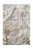 Later Stone Age Rock Painting Interpreted by Recent Scholars as Recording a Shamanistic Trance… Giclee Print