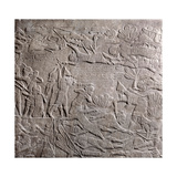 Stone Relief from the Palace Ashurbanipal Giclee Print