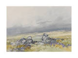 Grimspound, Dartmoor (Showing the Main Entrance from the South) , C.1895-96 Giclee Print by Frederick John Widgery
