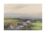 Wallabrook, Clapper Bridge, Dartmoor , C.1895-96 Giclee Print by Frederick John Widgery