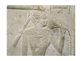 A Relief in the Tomb of Mereruka Depicting a Person Sniffing a Lotus Blossom Giclee Print