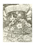 Pale Primroses Giclee Print by Alfred Parsons