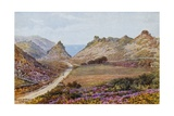 Valley of Rocks, Lynton Giclee Print by Alfred Robert Quinton