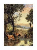 Summer Evening Giclee Print by Myles Birket Foster