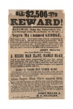 $2,500 Reward! Mississippi Co., Missouri Broadside Advertising Runaway Slaves, 23rd August 1852 Giclee Print