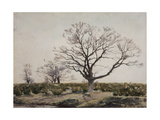The Tree Giclee Print by Henri Duhem