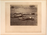 Field Where Gen. Reynolds Fell, Gettysburg, Published by Gardner, July 1863 Photographic Print by Timothy O'Sullivan