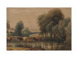 Landscape with Willows, Cows and Calf in a Stream, C.1835 Giclee Print by Peter De Wint