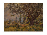 The Leaning Tree Giclee Print by Henri Duhem