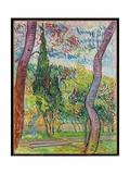 The Garden of St. Paul's Hospital, 1889 Giclee Print by Vincent van Gogh
