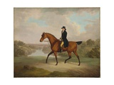 William Yates, Esq., of Springside, on His Favourite Roadster Giclee Print by Charles Towne