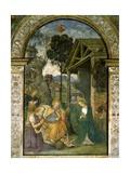 Nativity, C.1484-92 Giclée-tryk af Bernardino di Betto Pinturicchio