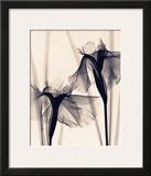 Japanese Iris Prints by Judith Mcmillan