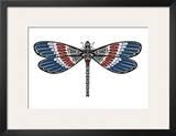 Totem Dragonfly Art by Matt James