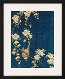 Goldfinch and Cherry Tree, c.1834 Posters by Katsushika Hokusai