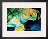 Timeless Wisdom, Hawaiian Sea Turtle Prints by Ari Vanderschoot