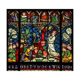 Window W12 Depicting the Agony in the Garden of Gethsemene Giclee Print