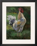 White And Yellow Rooster Prints by Nenad Mirkovich
