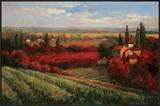 Tuscan Fields of Red Posters by Matt Thomas