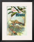 A Trip To Hawaii, Hawaiian Tourist Booklet Cover c.1894 Art