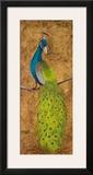 Peacocks II Prints by  Josefina
