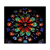 Window W17 Depicting a Rose with Naturalistic Design Giclee Print