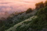 Sunset Fog and Summer Hills Photographic Print by Vincent James