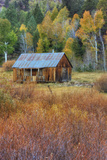 Hope Valley Cabin Scene Photographic Print by Vincent James