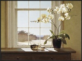 Orchids with Teapots Framed Giclee Print by Zhen-Huan Lu