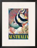 Australia, Great Barrier Reef c.1956 Posters by Eileen Mayo