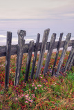 Sea Ranch Fence Photographic Print by Vincent James