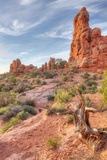Morning Among Sandstone, Southern Utah Photographic Print by Vincent James
