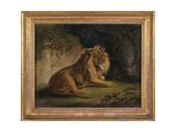 A Lion in a Jungle Landscape Giclee Print by Benjamin Zobel