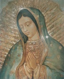 Madonna Di Guadalupe Plakater