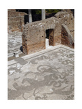 Baths of Neptune. 1st - 2nd Centuries Ad. Detail of Mosaic of Neptune's Triumph Depicting Neptune… Giclee Print