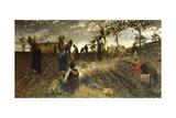 Seeding in Tuscany Giclee Print by Niccolo Cannicci