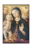The Virgin and Child with Two Saints, C.1500 Giclee Print by Bernardino Fungai