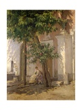 Villa Garzoni Giclee Print by Giovacchino Toma