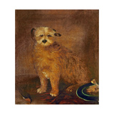 Wordsworth's Dog, Pepper, C.1806-20 Giclee Print