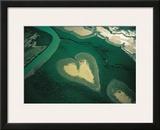 Coeur de Voh Poster by Yann Arthus-Bertrand