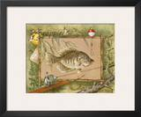 Crappie Prints by Anita Phillips