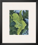 Green Oak Leaves, c.1923 Prints by Georgia O'Keeffe