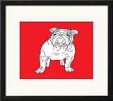 British Bulldog Prints by Anna Nyberg
