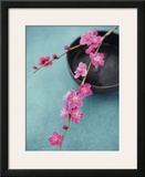 Cherry Tree Branch Prints by Amelie Vuillon